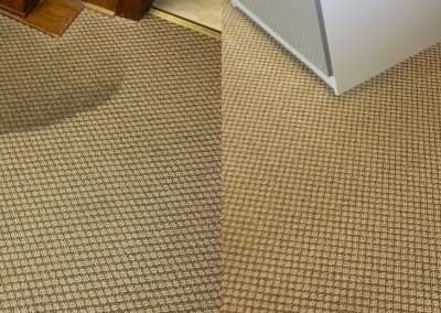 Residential Eco-Friendly Dry Carpet Cleaning